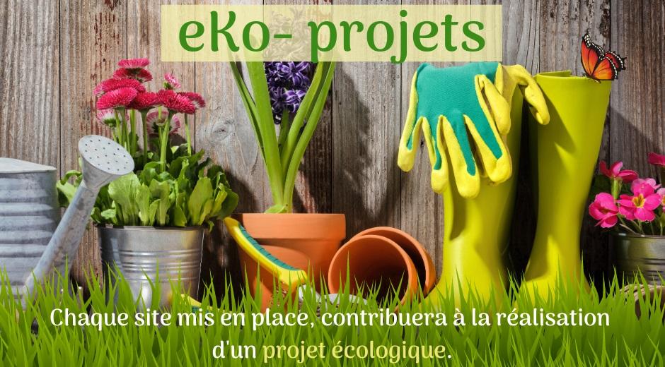 EKo-projets-1